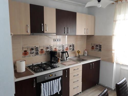 . Apartament ALEXANDRU
