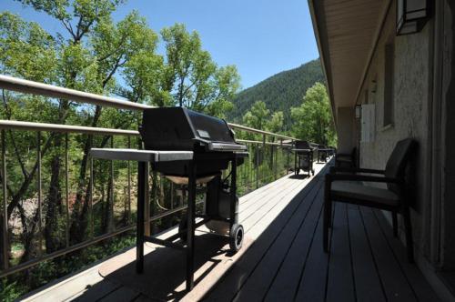 Chateau Roaring Fork Unit 14 - Aspen, CO 81611