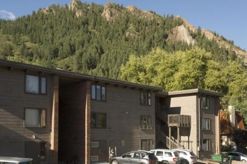 Cottonwoods Unit 1f - Aspen, CO 81611