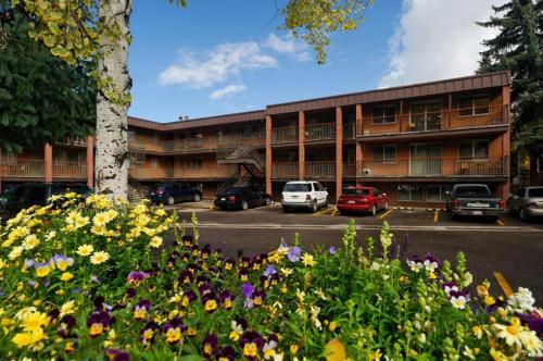 Silverglo Condominiums Unit 307 - Aspen, CO 81611