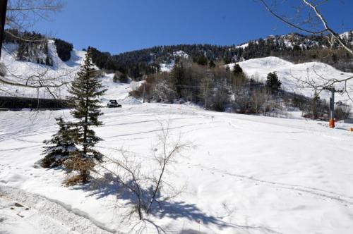 Mountain Queen Unit 5 - Aspen, CO 81611