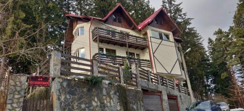 Casa Adina - Hotel - Sinaia