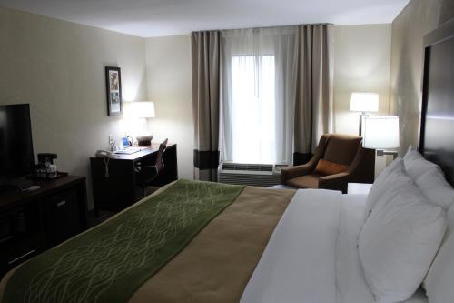 Comfort Inn & Suites Griffin - Griffin, GA 30223