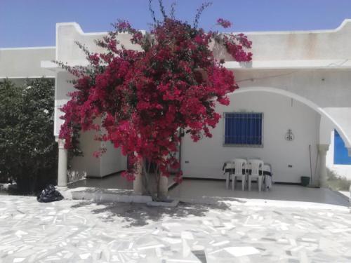 Spacieuse villa camera foto