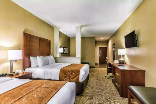 Comfort Suites Houston I45 North - image 6