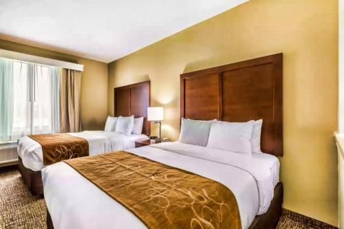 Comfort Suites Houston I45 North - image 7