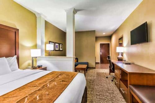 Comfort Suites Houston I45 North - image 4
