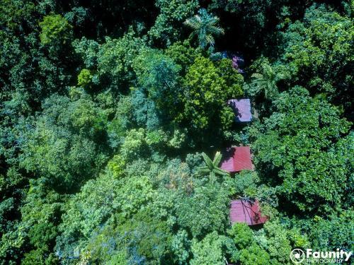 . Yatama Rainforest Ecolodge