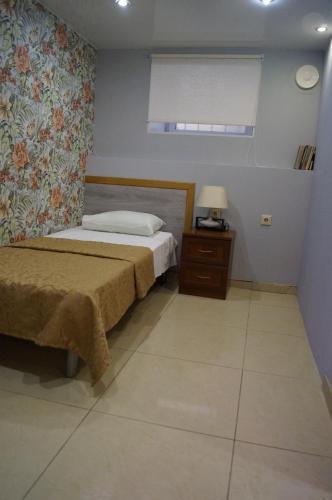 Hotel Yanina Бюджетный одноместный номер