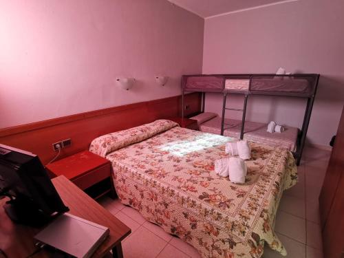 Llitera en Dormitori Mixt (Bunk Bed in Mixed Dormitory Room)