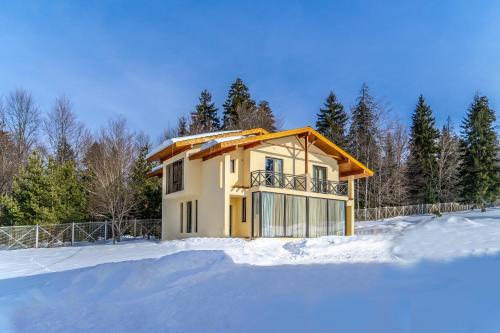 Villa by sunexpress bakuriani - Accommodation - Bakuriani