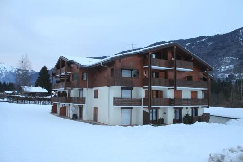 Residence Des Neige Morillon 1100