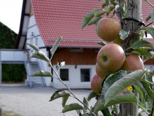 . Ferienhof Waggershauser