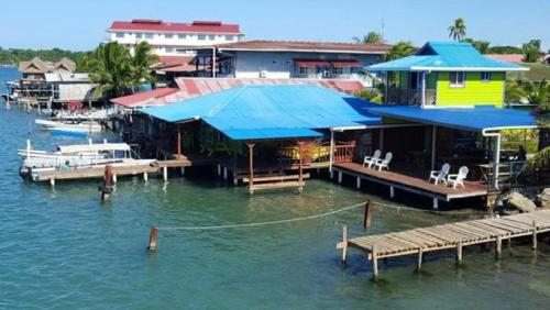 Bocas Surf School & Guest House