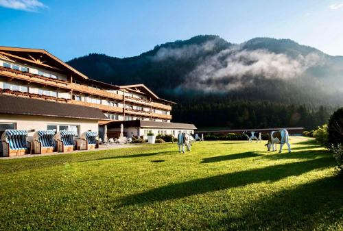 KUHOTEL by Rilano - Hotel - Waidring