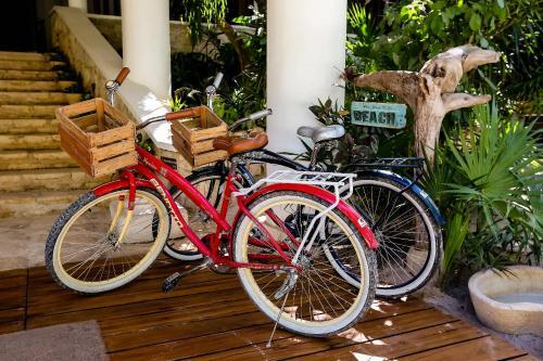 Carretera Tulum-Boca Paila KM 7, Zona Hotelera, 77780 Cancún, Mexico.
