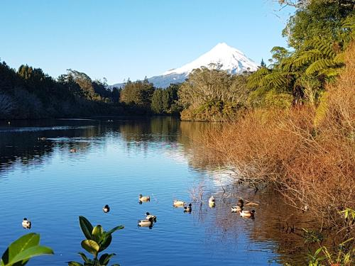 Historical home with Mt. Taranaki