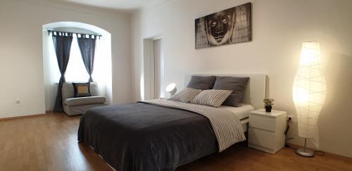 Apartments Mi Casa 2, Hotel in Graz