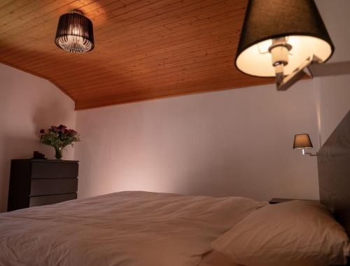 Ferienhaus Septimer - Hotel - Bivio