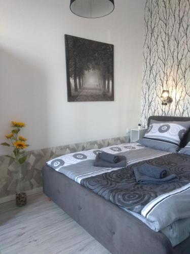 Apartment Orawska