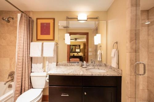 Fasching Haus 6 Bedroom Luxury - Aspen, CO 81611