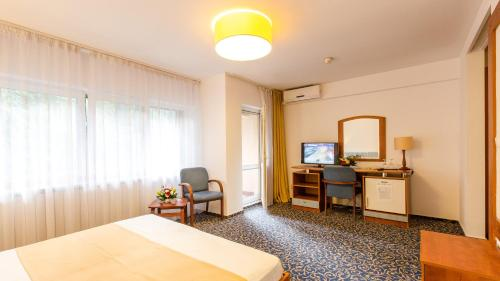 Superior Double or Twin Room with Balcony and Park View