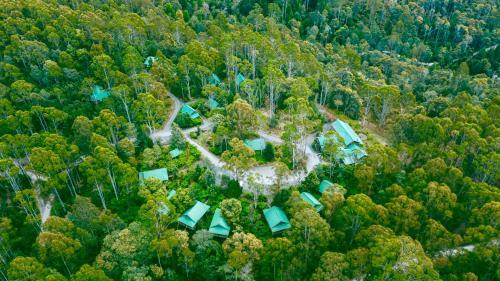 . Lemonthyme Wilderness Retreat