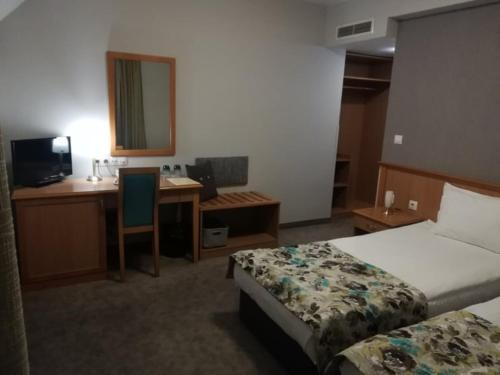 Standard Family Room ( 2 Interconnected Double Rooms)