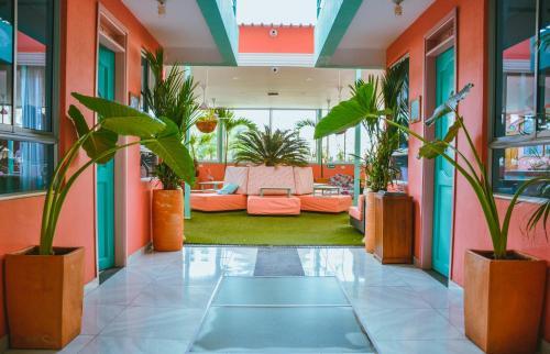 Hotel Flamingo Hostel & Coworking