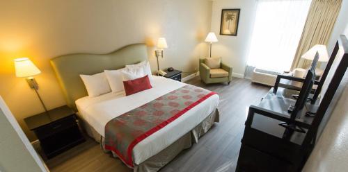 Plaza Hotel Fort Lauderdale - image 8