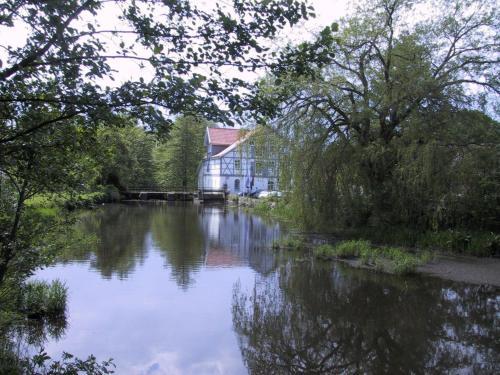 Mühlenteich in der Oldenstädter Wassermühle