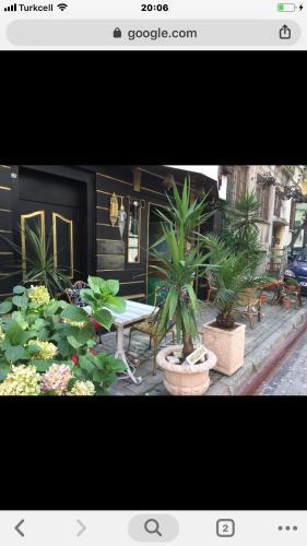 Avrasya Istanbul Hostel