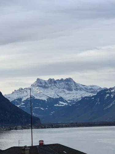 TOP Montreux Centre 2-8 p., view lake and Chillon Castle