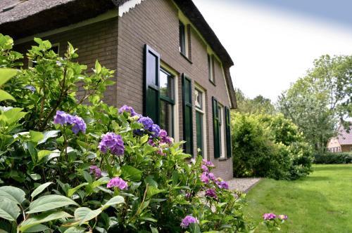 Bij ons op 20, Pension in Nijeveen bei Steenwijk