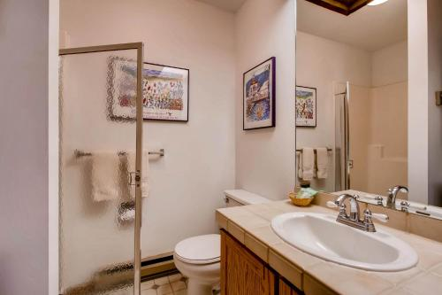 Ski-in/Ski-out Condo Rentals - Crested Butte, CO 81225