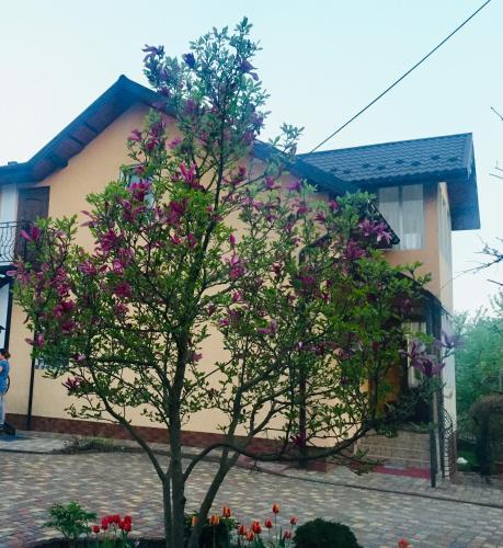. Villa Yaryna