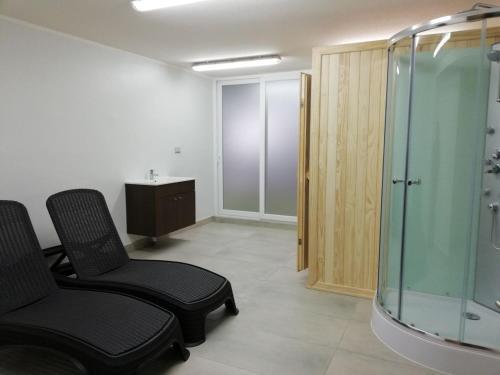 EDIFICIO ALTA VISTA PUCON - Apartment - Pucón