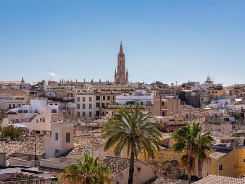Carrer Sant Jaume, 18 Palma, 07012 Majorca, Spain.