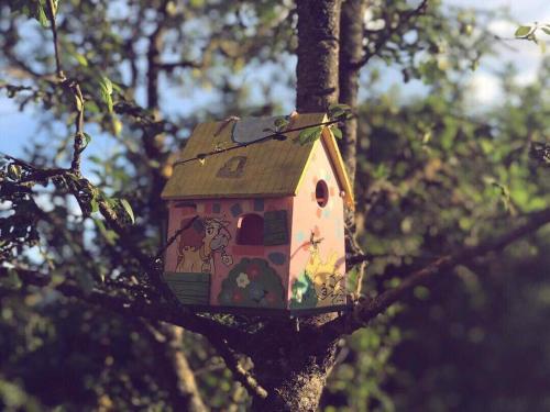 Guest House Village Khvanchkara, Ambrolauri