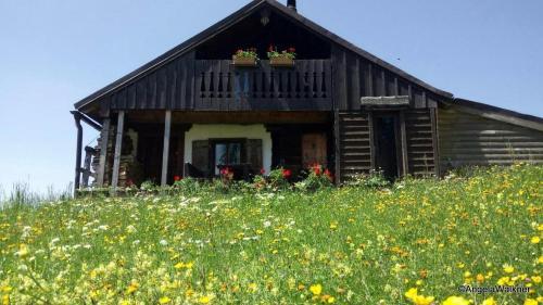 Schnaitstadlhütte - Accommodation - Krispl - Gaissau