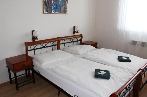Hotel-overnachting met je hond in Hotel Černý kůň - Louny