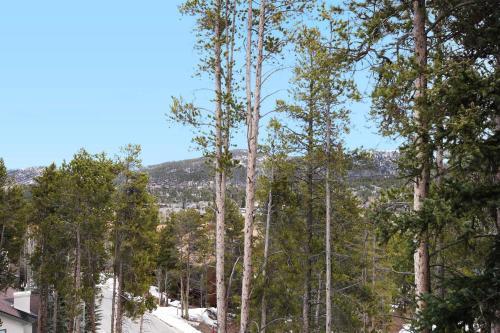 Elk Ridge 406 Townhouse - Breckenridge, CO 80424