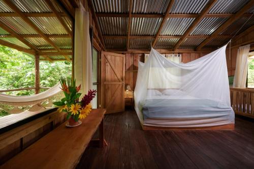 . Finca Amistad Cacao Lodge