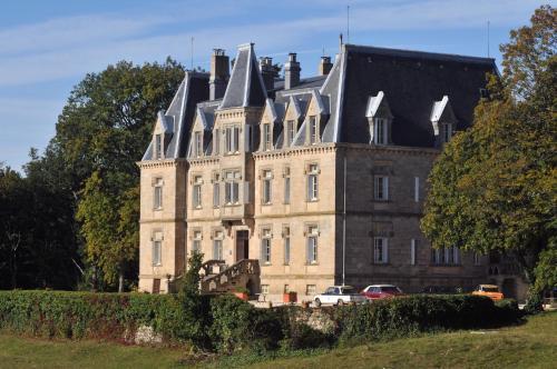 Kasteel-overnachting met je hond in Château des Faugs - Boffres