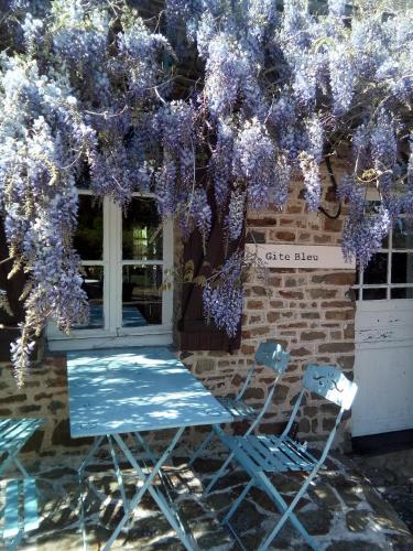 Gite Bleu - Location saisonnière - Ménil-Vin