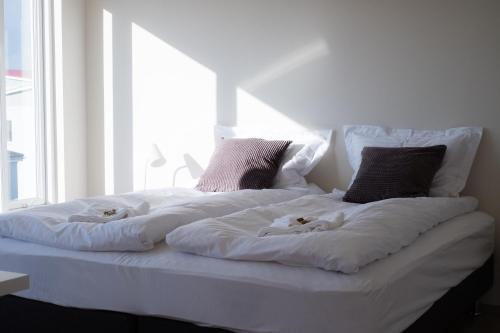 Spirit North Guesthouse - Accommodation - Húsavík