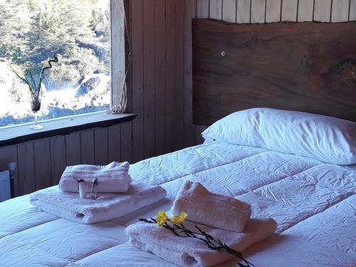 Hotel Patagonia Truful - Melipeuco