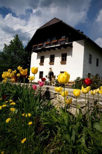 Ferienhof Rotbuchner - Hotel - Vorderstoder