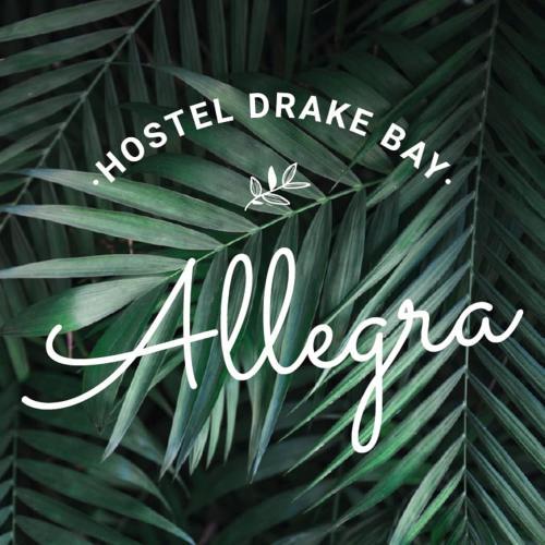 . Allegra Hostel