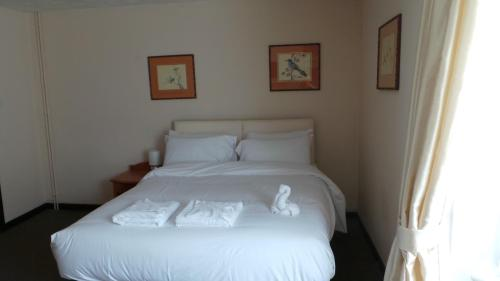 Dolphin Hotel picture 1 of 24